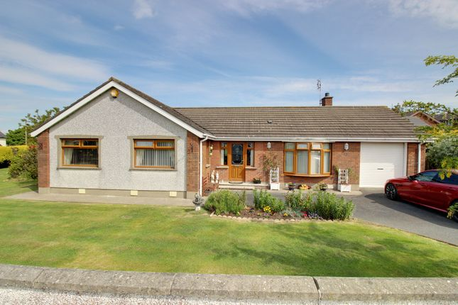 Thumbnail Detached bungalow for sale in Hillside, Portavogie