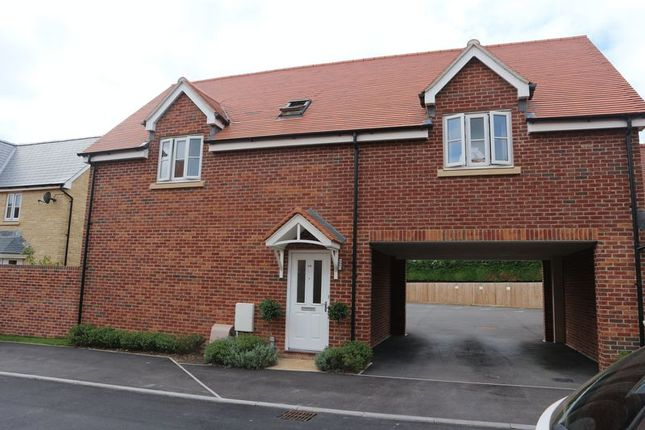 Thumbnail Property to rent in Brooklands, Chippenham