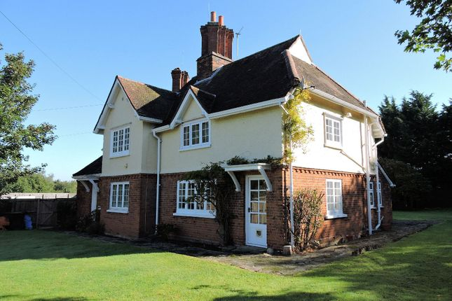 Thumbnail Detached house to rent in Sheering Road, Harlow