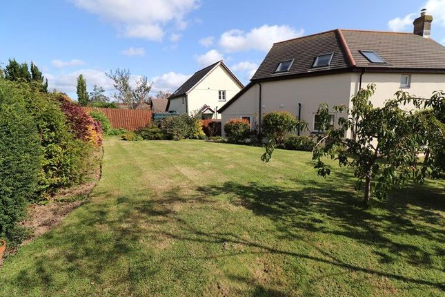 Picture 13 of Little Meadow, Pyworthy, Holsworthy EX22