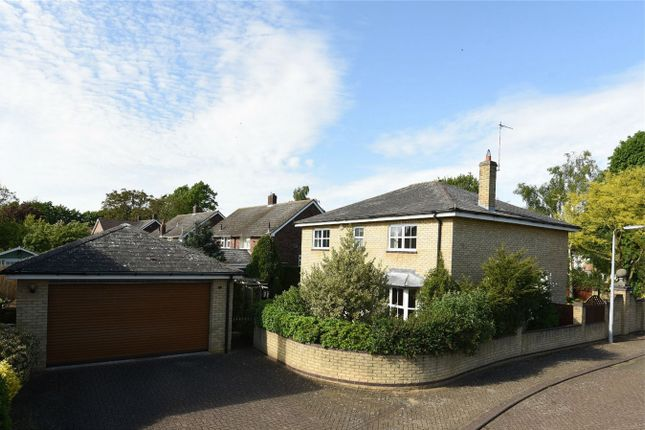 Thumbnail Detached house for sale in Grange Way, Willington, Bedford