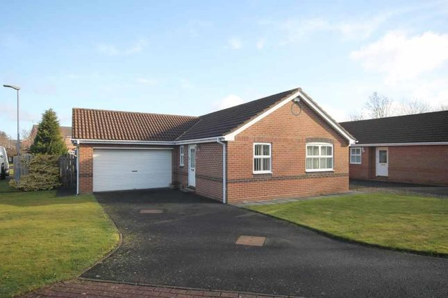 Thumbnail Detached bungalow for sale in Detached Bungalow In Village Location Rivermede, Ponteland, Newcastle Upon Tyne