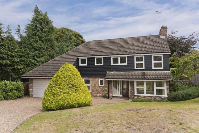 Thumbnail Detached house to rent in Manor Chase, Weybridge Park, Weybridge