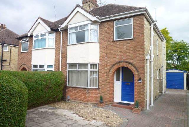 Thumbnail Semi-detached house to rent in Perne Avenue, Cambridge, Cambridgeshire