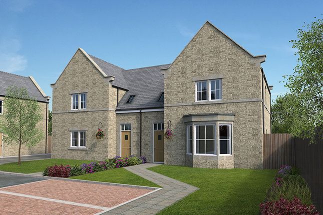 Thumbnail 3 bedroom semi-detached house for sale in Hawthorn Court, Peak Dale