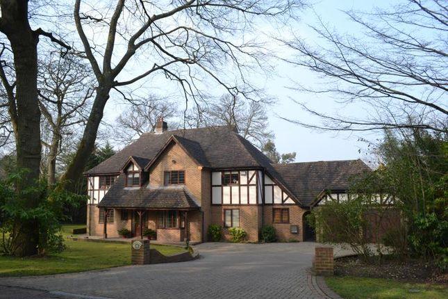 Thumbnail Property to rent in Godolphin Road, Weybridge