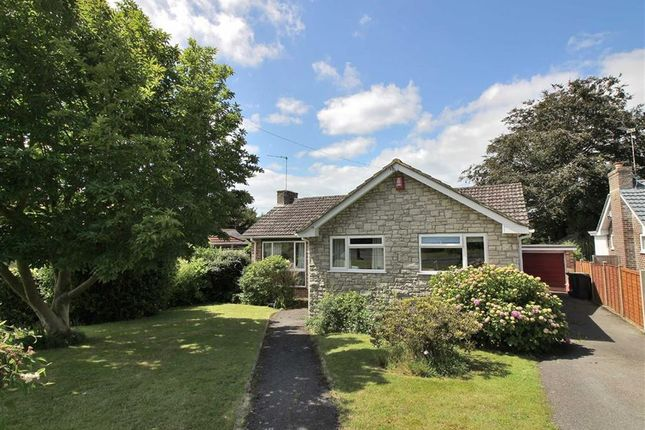 Thumbnail Detached bungalow to rent in Manning Avenue, Highcliffe, Christchurch