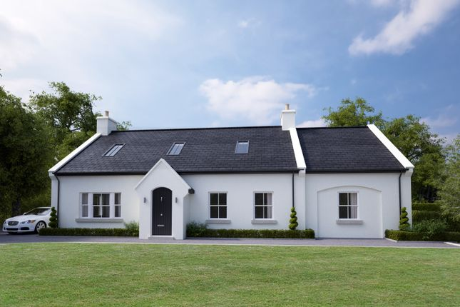 Thumbnail Detached house for sale in Vestry Road, Ballygowan