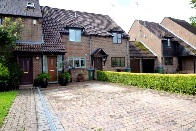 Thumbnail Terraced house to rent in Oaks Close, Westergate