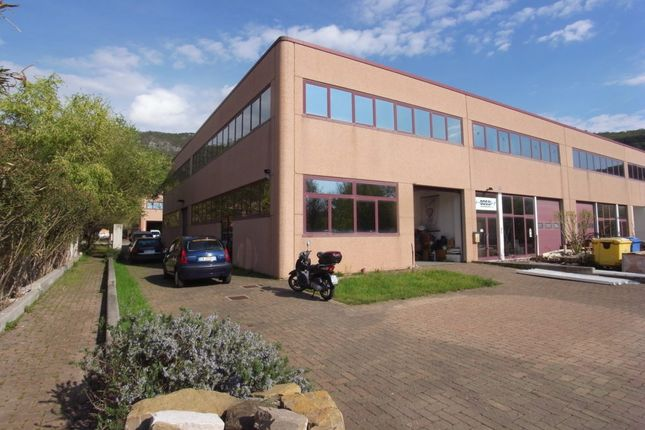 Thumbnail Office for sale in Triest, Friuli Venezia Giulia, Italy