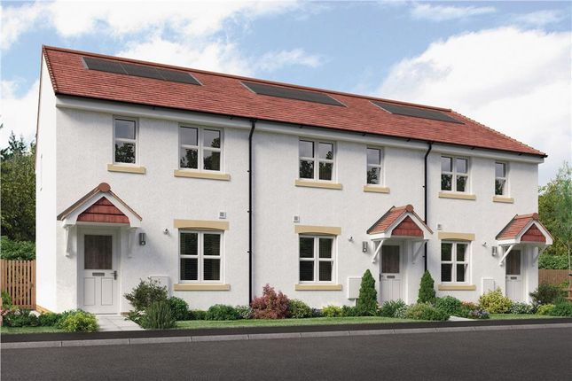 "3 bedroom mews house for sale in ""Urquhart End"" at Brora Crescent, Hamilton"