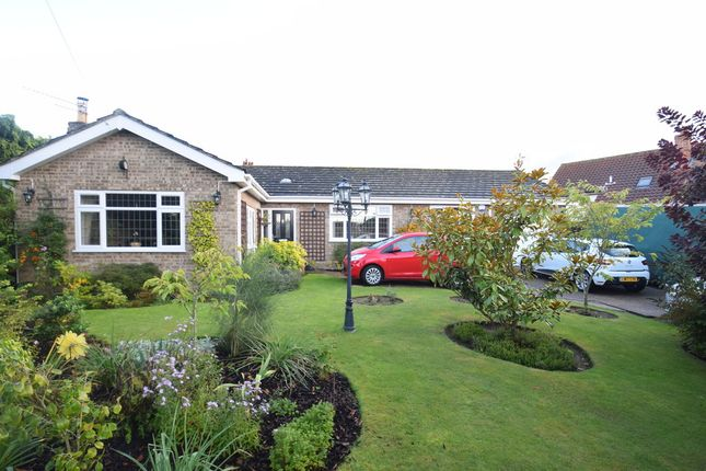 Thumbnail Detached bungalow for sale in Back Lane, Badwell Ash, Bury St. Edmunds