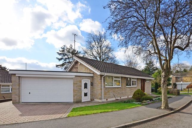 Thumbnail Detached bungalow for sale in Silverdale Glade, Ecclesall, Sheffield