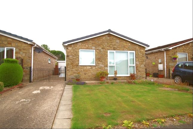 Thumbnail Bungalow to rent in Mill Rise, Driffield