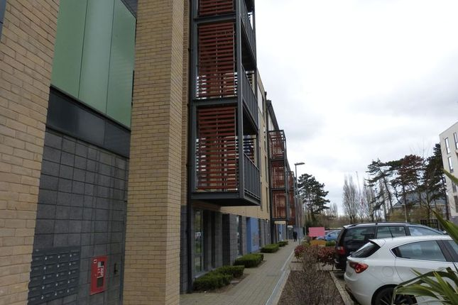 2 bed flat to rent in Two Bedroom To-Let, Pulse Development, Colindale, London