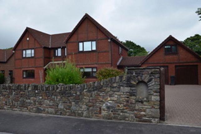Thumbnail Detached house for sale in St Davids Park, Water Street, Margam, Port Talbot.