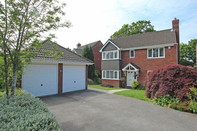 Thumbnail Detached house for sale in Rufus Close, Rownhams, Southampton