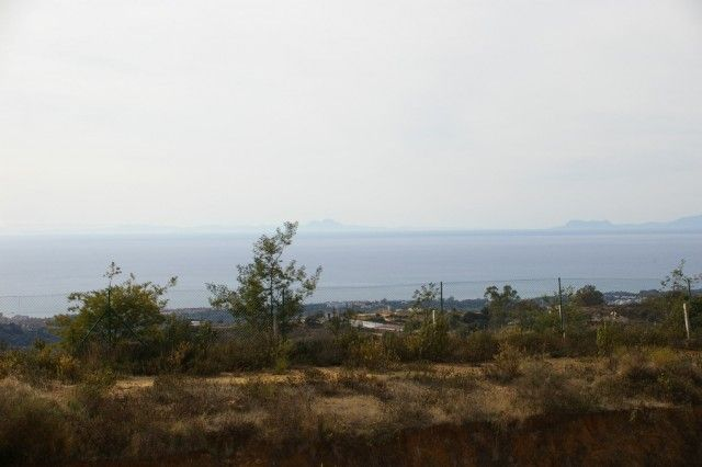 Views From Rear Terrace