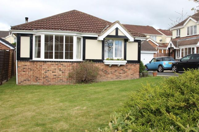 3 bed detached bungalow for sale in Harebell Close, Killinghall, Harrogate