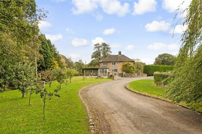 Thumbnail Detached house to rent in Markington, Harrogate, North Yorkshire