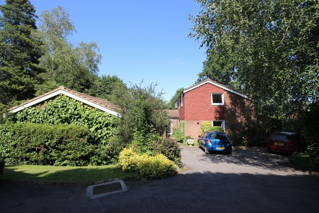 Thumbnail Detached house to rent in The Spinney, Roundwood Park, Harpenden