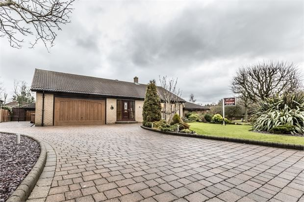 Thumbnail Detached bungalow for sale in Forest Drive, Rickleton, Washington, Tyne & Wear.