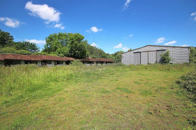 Additional Land Option/Equestrian Centre