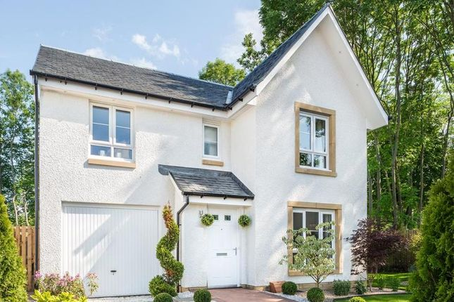 """Thumbnail Detached house for sale in """"Dunbar"""" at Newtonmore Drive, Kirkcaldy"""