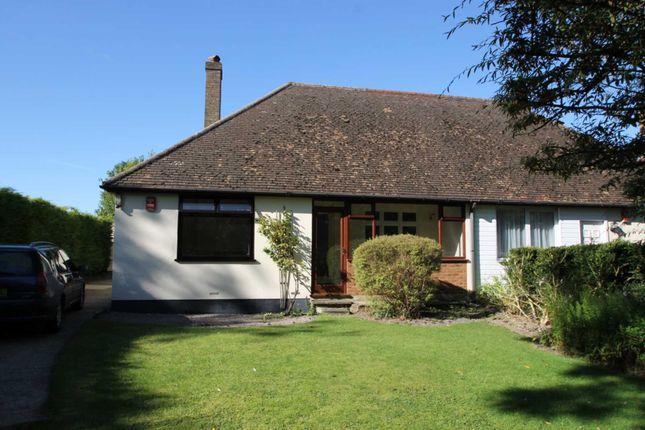 Thumbnail Semi-detached bungalow to rent in Tring Road, Edlesborough, Dunstable