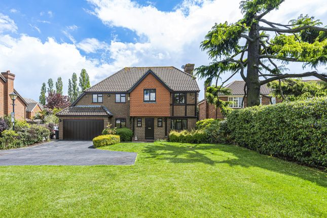 Thumbnail Detached house for sale in Orchard Avenue, Croydon