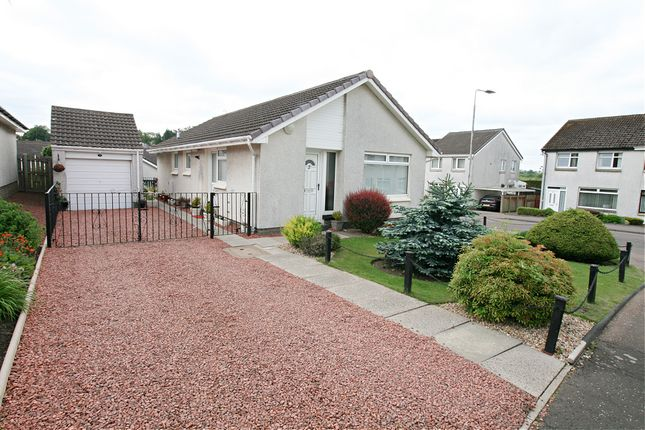 3 bed detached bungalow for sale in Ivanhoe Court, Carluke ML8