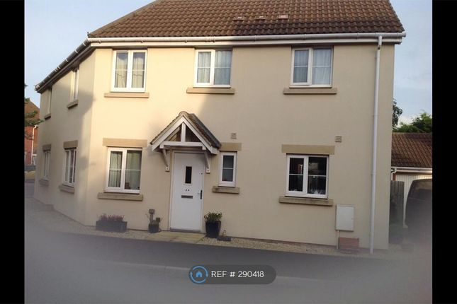 Thumbnail Semi-detached house to rent in Links Close, Burnham On Sea