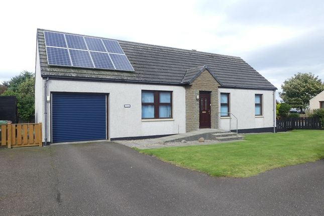 Thumbnail Detached bungalow for sale in Baikie Place, Thrumster