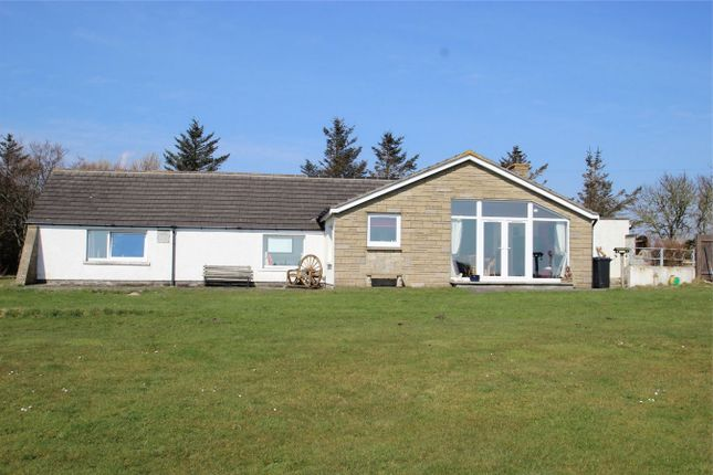 Thumbnail Detached house for sale in Brooklands, Forse, Lybster, Highland