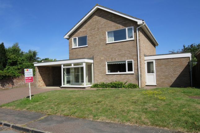 Thumbnail Detached house for sale in Hall Hills, Diss, Diss