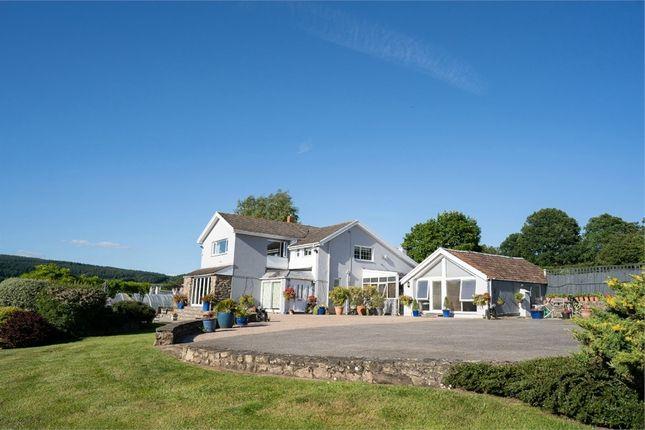 Thumbnail Detached house for sale in Llandevaud Lane, Llandevaud, Monmouthshire