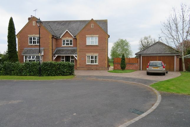 Thumbnail Detached house to rent in Jasmine Lane, St Marys Park, Burghill, Hereford