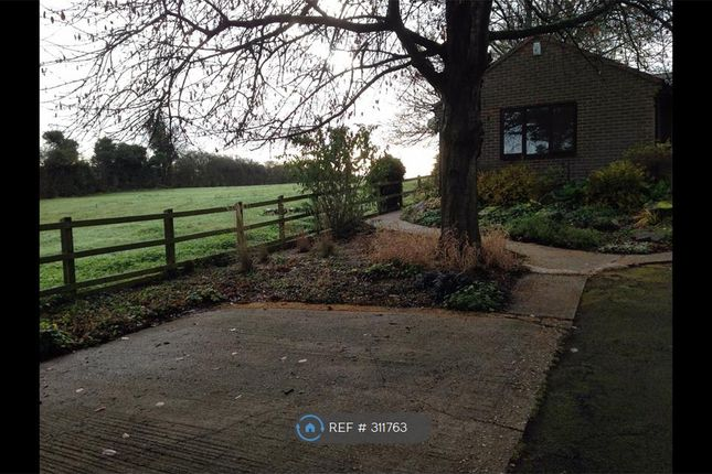 Thumbnail Maisonette to rent in Alresford Drove, Winchester