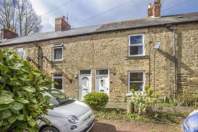Thumbnail Cottage to rent in Riverside, Morpeth