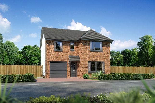 "Thumbnail Detached house for sale in ""Dukeswood"" at Countesswells Park Place, Aberdeen"