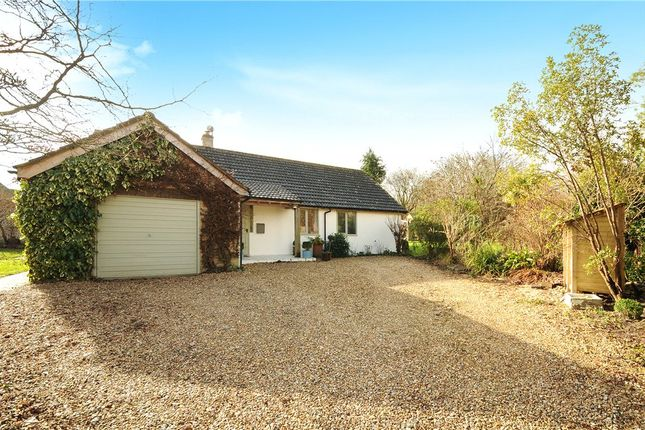 Thumbnail Detached bungalow for sale in Pearmans End, Melcombe Bingham, Dorchester, Dorset