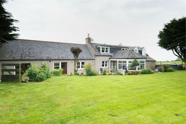 Thumbnail Detached house for sale in Wellheads, Stonehaven, Aberdeenshire