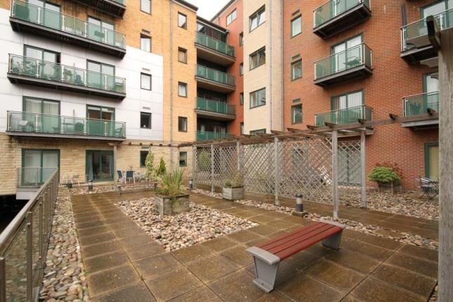 Communal Gardens of The Brew House, 211 Ecclesall Road, Sheffield, South Yorkshire S11