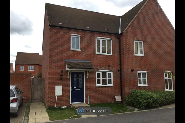 Thumbnail Semi-detached house to rent in Abelyn Avenue, Sittingbourne