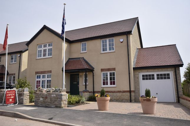 Thumbnail Detached house for sale in The Alcombe, The Chestnuts, Winscombe, Somerset