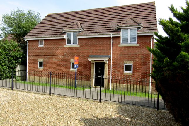 Thumbnail Detached house to rent in Thyme Avenue, Whiteley, Fareham
