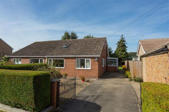 Thumbnail 4 bed semi-detached bungalow for sale in Corner Close, Wigginton, York