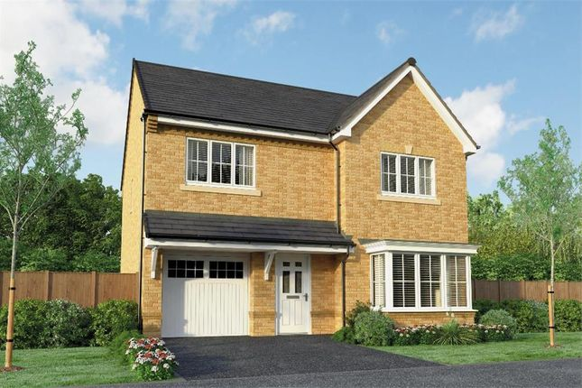 """Thumbnail Detached house for sale in """"The Crompton"""" at Park Road South, Middlesbrough"""