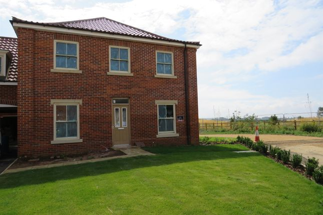 Thumbnail Detached house for sale in Curlew Close, Hunstanton