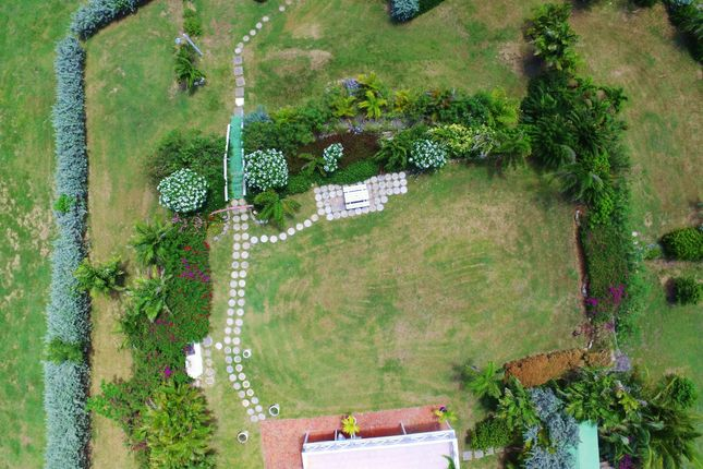 Aerial View of Serendipity, Foster Hall Plantation, Barbados